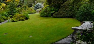 lawn-care-services